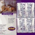 Advantage Purple Cat Medium/large 4pk