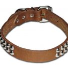 "1"" RG Cone-studded Bully collar"