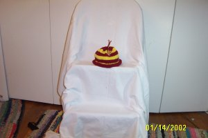 Child's Redskins Hat