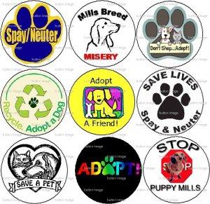 """Lot Set 9 * ADOPT A PET * Dog Cat Spay Neuter Pinback Buttons 1.25"""""""