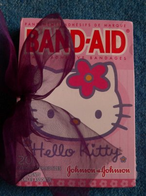 "Blank Journal w/ ""Hello Kitty"" images"