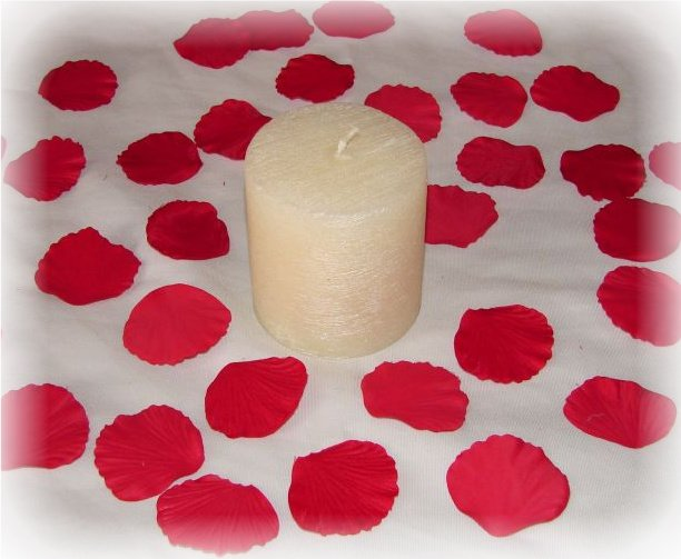 100 Red Silk Rose Petals Weddings Crafts (Small)