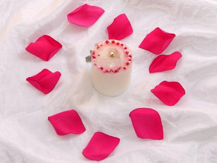 1000 Fuscia Silk Rose Petals Weddings Crafts (Large)