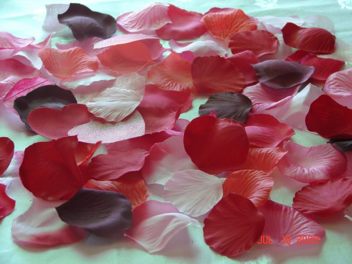 250 Red, Burgundy & Pink Mix Silk Rose Petals Weddings Crafts (Large)