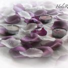 250 Mauve & Ivory Mix Silk Rose Petals Weddings Crafts (Large)