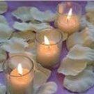 500 Ivory Silk Rose Petals Weddings Crafts (Large)