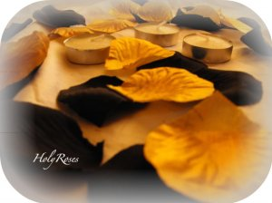 250 Black & Gold Mix of Silk Rose Petals Weddings Crafts (Large)