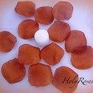 250 Cinnamon Brown Silk Rose Petals Weddings Crafts (Large)
