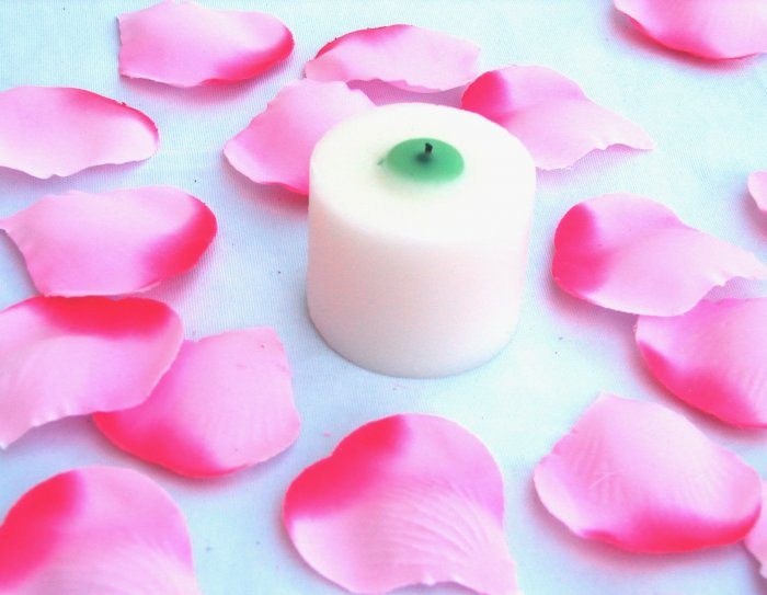 250 Fuscia Pink Two Tone Silk Rose Petals Weddings Crafts (Large)