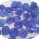 100 Dark Purple Silk Rose Petals Weddings Crafts (Large)