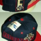 FLORIDA PANTHERS NHL BALL CAP, ADJUSTABLE **NEW**