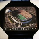GIANTS STADIUM, 1976-2010 - RARE PHOTOGRAPH 8X10 - CUSTOM FRAMED *NEW*