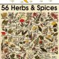 Y926 Cross Stitch PATTERN Book ONLY Jeanette Crews 56 Herbs & Spices One Nighter