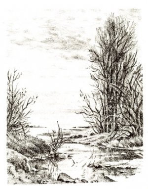 The Landscape~~~