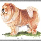 Chow Chow dog canvas art print