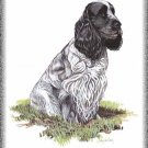 English Cocker Spaniel dog canvas art print