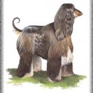 Afghan Hound dog canvas art print