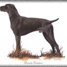 Deutscher Vorst dog canvas art print