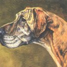Great Dane dog canvas art print by Edwin Megargee