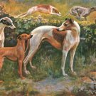 Whippet and Greyhounds dog canvas art print by Edward Herbert Miner