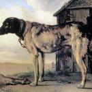 Guard Dog canvas art print by Paulus Potter
