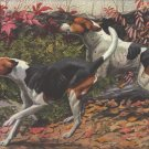 American & English Foxhounds dog canvas art print by Agassiz Fuertes