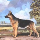 German Shepherd dog canvas art print by Reuben Ward Bink