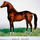 Gold Dust horse equestrian 1875 canvas art print by Currier & Ives