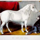 My pony and Dog horse equestrian canvas art print by Currier & Ives