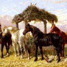 Horses and Ducks by a River equestrian painting canvas art print by John F. Herring Sr