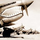P-40 Curtiss fighter planes Flying Tigers World War II WWII 1942 photo photograph art Print