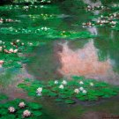 The Water Lillie flower landscape canvas art print by Claude Monet