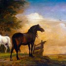 Two Horses equestrian canvas art print by Paulus Potter
