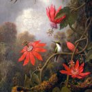 Hummingbird and Passionflowers ca 1885 canvas art print by Martin Johnson Heade