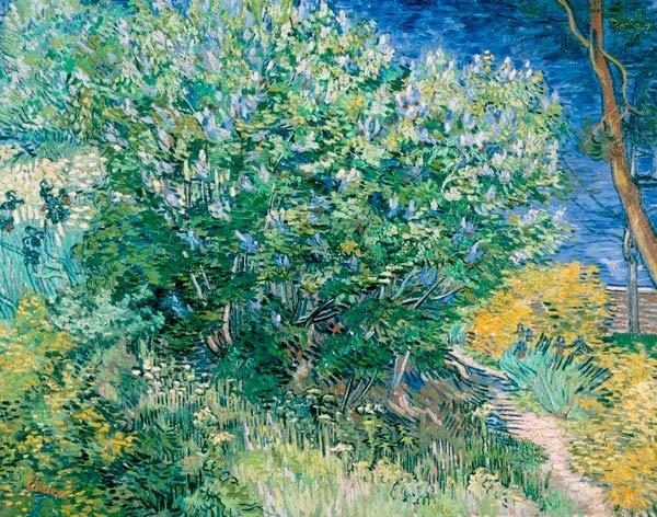 Lilac Bush water landscape canvas art print by Vincent van Gogh