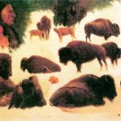Study of Buffaloes wild animal canvas art print by Bierstadt