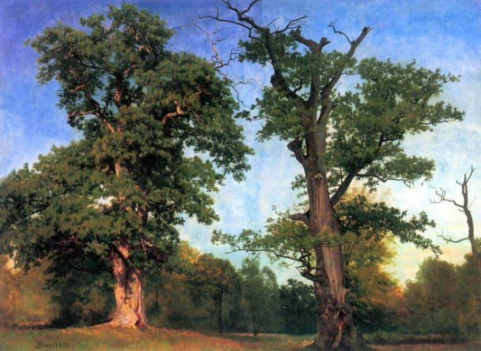 The Pioneers of Forests landscape canvas art print by Bierstadt