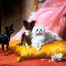 The Pampered Pets dog canvas art print by Euphemie Muraton