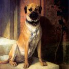 Mastiff on Steps 1863 dog animal canvas art print by William Luker Sr.