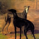 Rolla and Portia Greyhounds dogs canvas art print by Jacques J Agasse