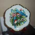 "7"" Collector's Plate Eastern Bluebird Birds Flowers Gold Trim  #301680"