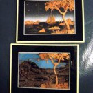 "Two 5"" x 6 1/2"" Mondelo 33 and 38 Wall Art Pictures #300002"
