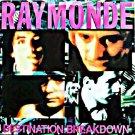 "Raymonde DEstination Breakdown 12"" RARE '88 original UK picture sleeve HEAR"