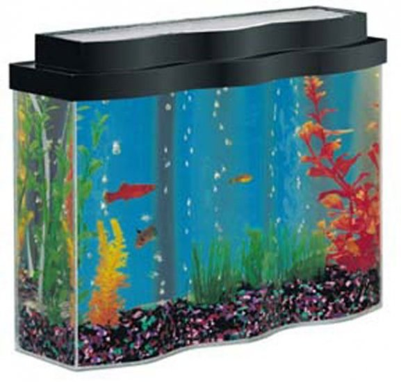 Aquawave 2 5 Gallon Desktop Aquarium