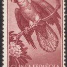 Spanish Guinea #B41, MH - Parrot