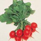 Organic Cherry Belle Radish 100 Seeds Free Shipping
