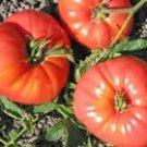 Heirloom Omar's Lebanese Tomato 30 Seeds!