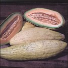 Bannana Melon 10 seeds $4.99 Free Ship