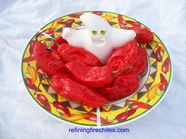 Bhut Jolokia Hot Pepper 10+ seeds!