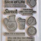 tpc studio SLICE OF LIFE Rubber Stamps the paper company 15 pcs